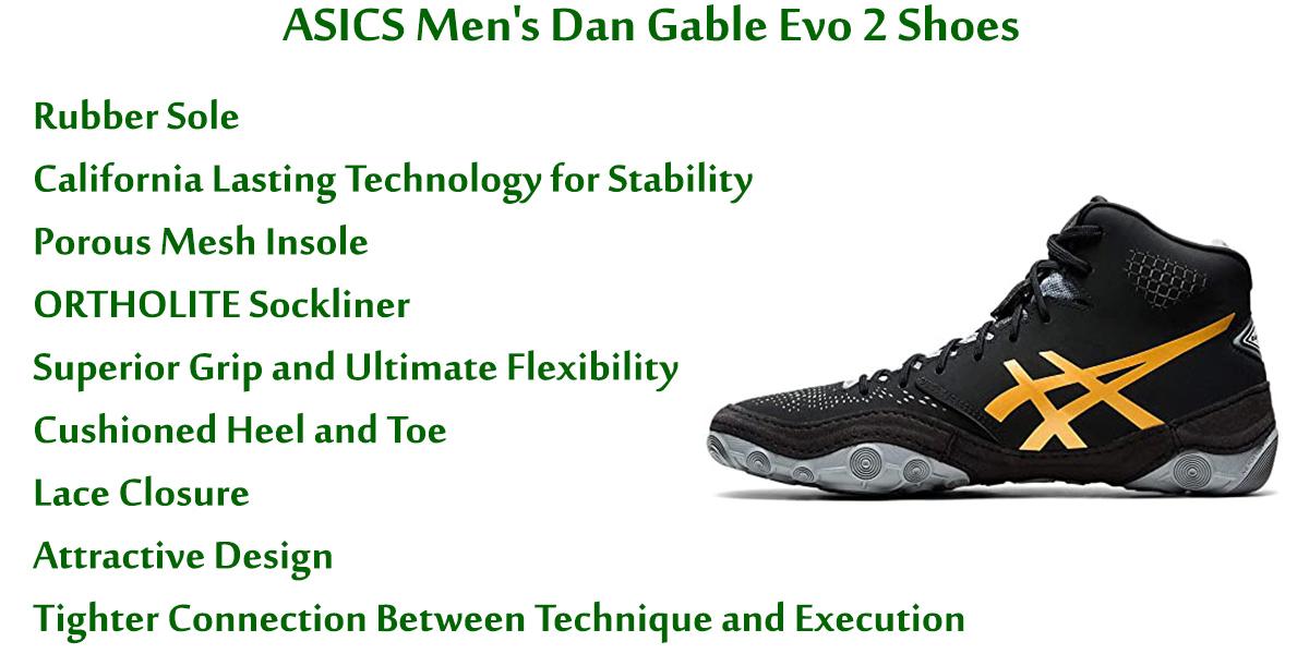 ASICS-Men's-Dan-Gable-Evo-2-Shoes